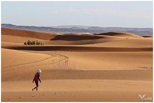 Rallye Aicha des Gazelles et l'ESAT COTRA